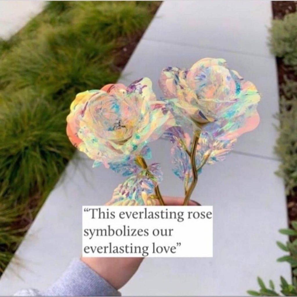 """This everlasting rose symbolizes our everlasting love"""