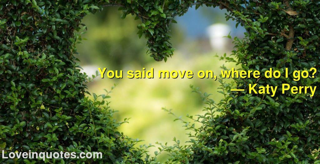 You said move on, where do I go?      ― Katy Perry