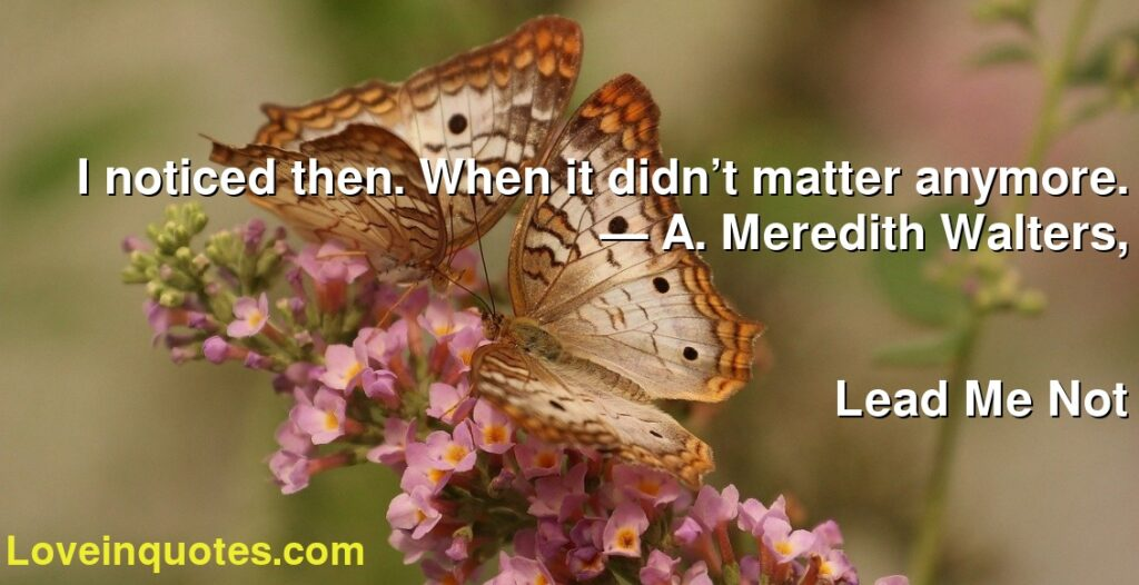 I noticed then. When it didn't matter anymore.      ― A. Meredith Walters,               Lead Me Not